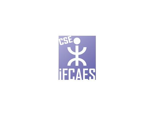 CSE IFCAES